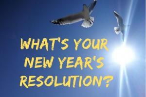 蒲郡市竹島橋の真ん中で2019年の抱負を叫ぶ! What's your new year's resolution?